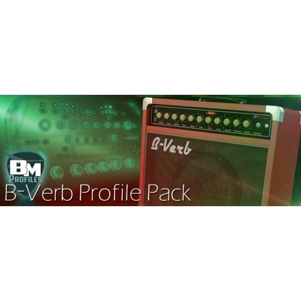 BVerb Pack